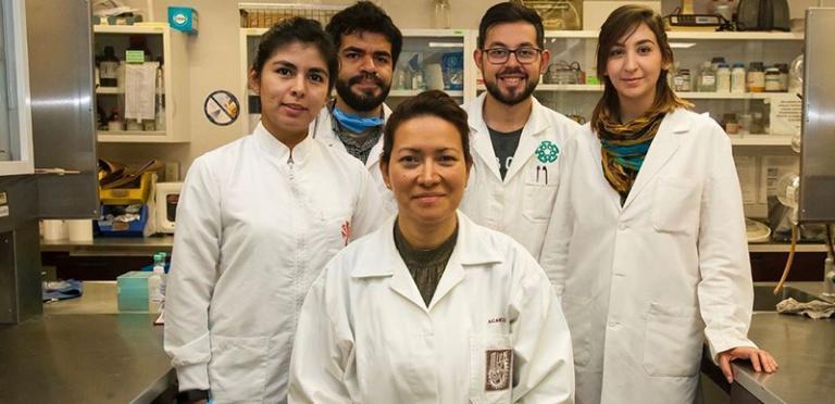 Eliminan el Virus del Papiloma Humano en 29 pacientes