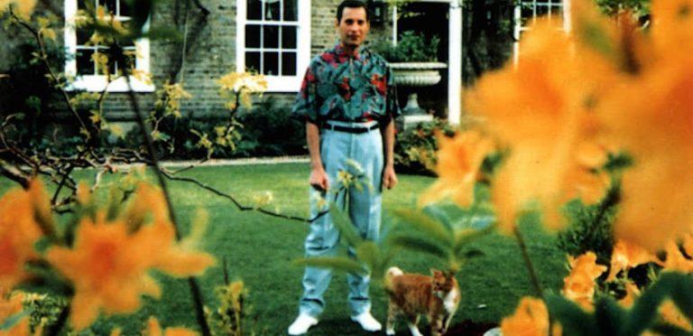 Freddie Mercury  quiso morir bajo sus propios términos, revela su asistente