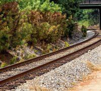 Juez Federal frenó la construcción del tramo 1 del Tren Maya