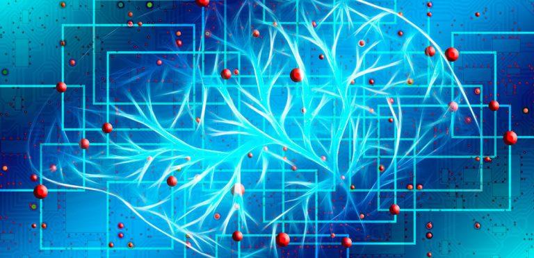 Identifican la posible ubicación física de la conciencia (y no se encuentra en el cerebro)